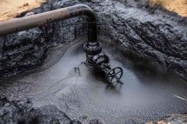 contaminado el planeta