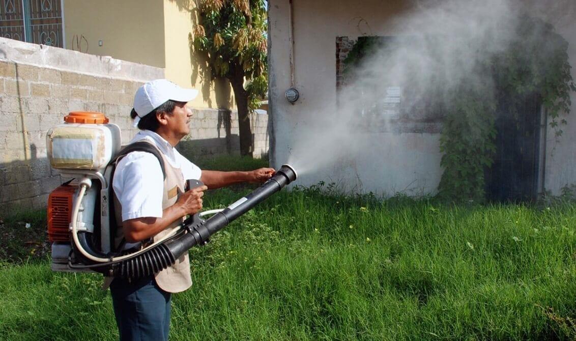 4.602 casos de dengue