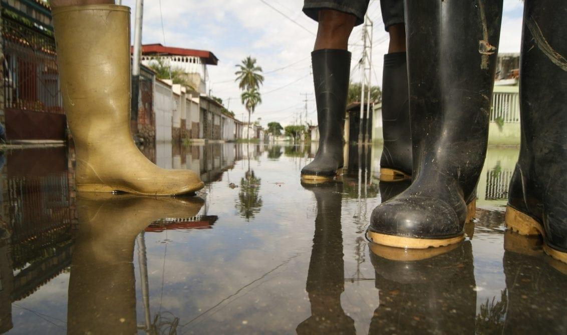 La vida entre las aguas peligrosas del Lago de Valencia (I)