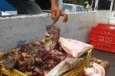 Mercado Las Pulgas de Maracaibo