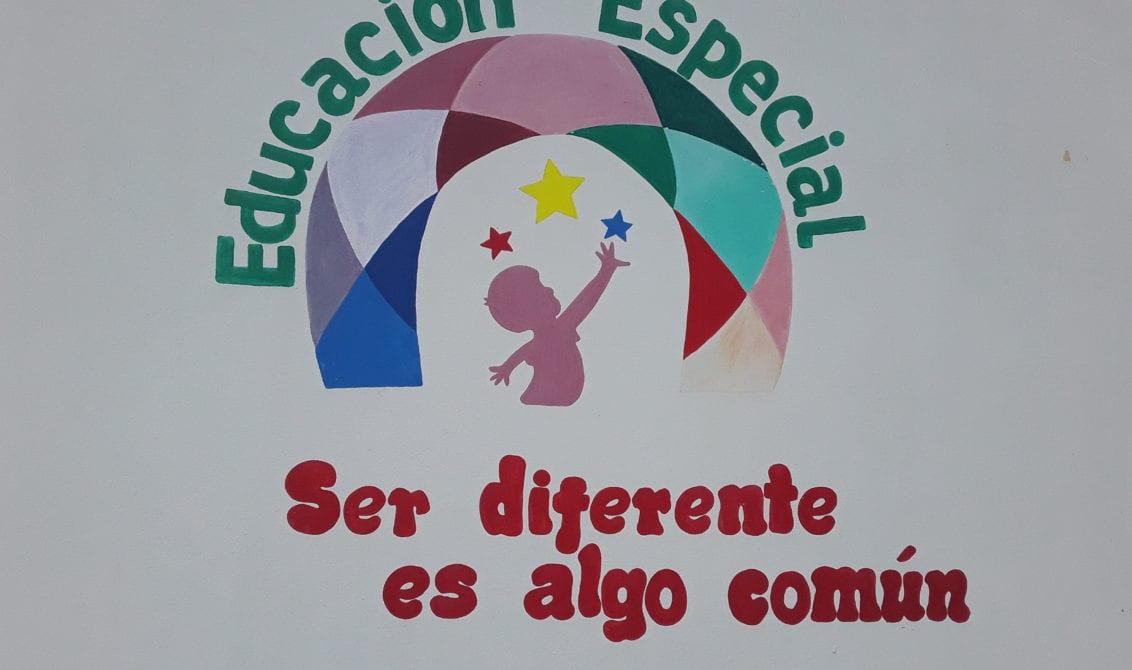 educación especial- personas con discapacidad